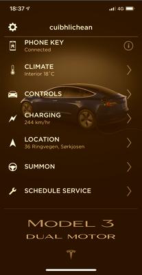 The charging Tesla